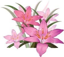 Gladiolus svg #12, Download drawings