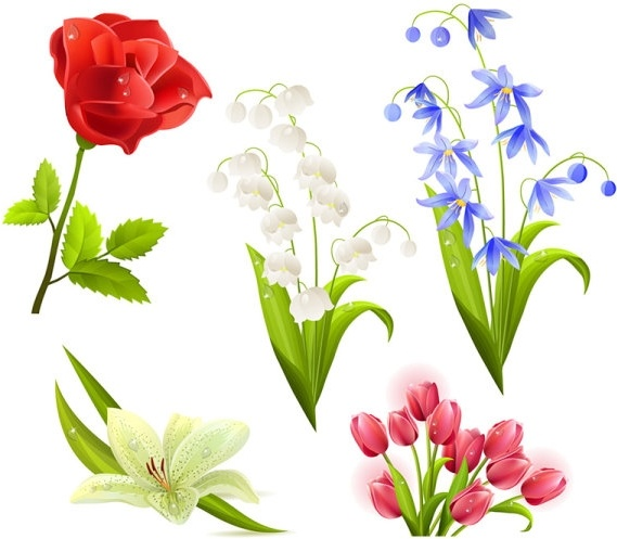 Gladiolus svg #11, Download drawings