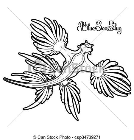 Glaucus Atlanticus clipart #15, Download drawings