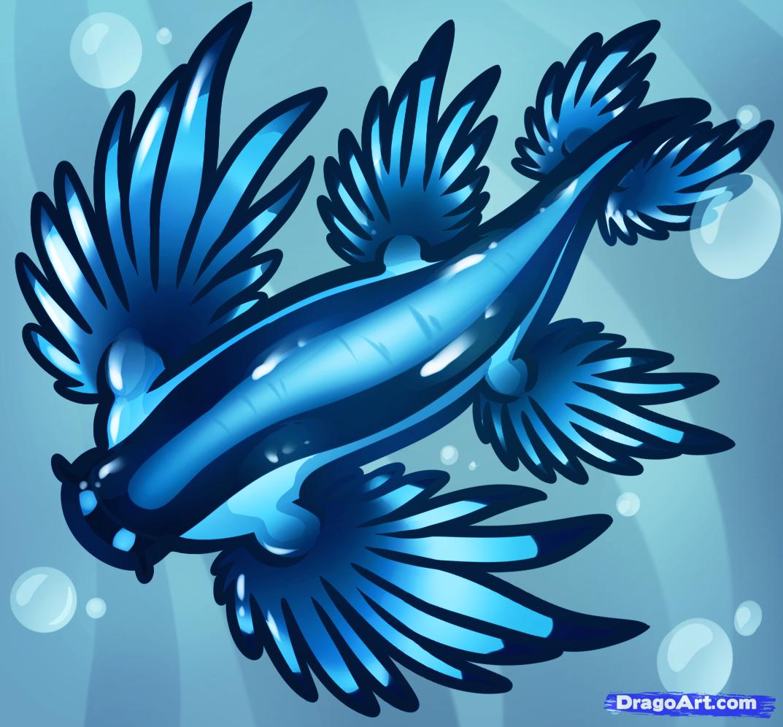 Glaucus Atlanticus coloring #10, Download drawings