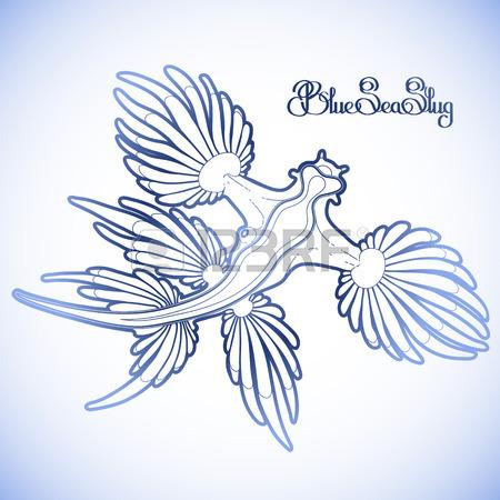 Glaucus Atlanticus coloring #2, Download drawings