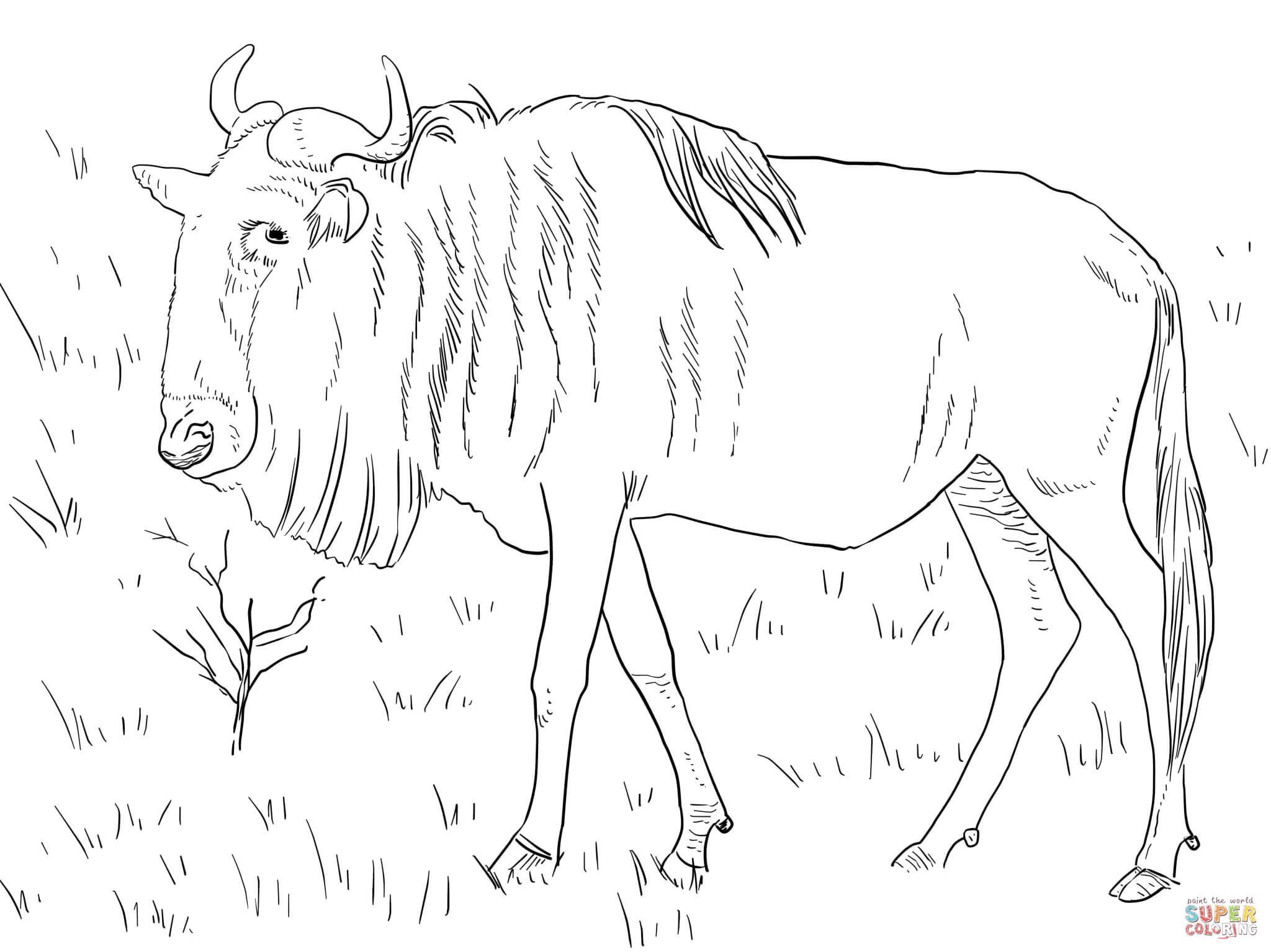 Gnu coloring #1, Download drawings