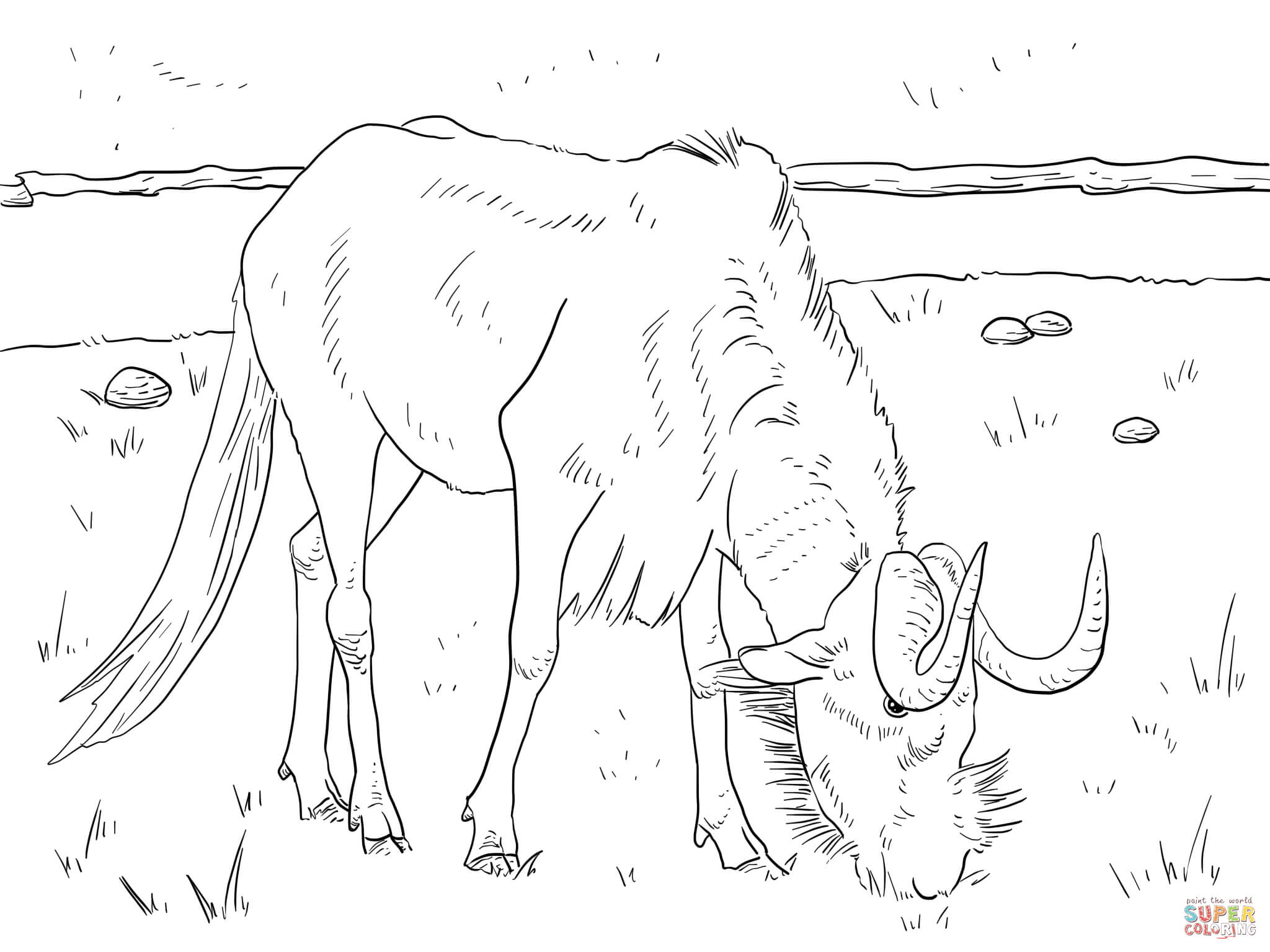 Wildebeest coloring #2, Download drawings