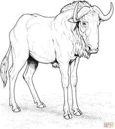 Gnu coloring #15, Download drawings