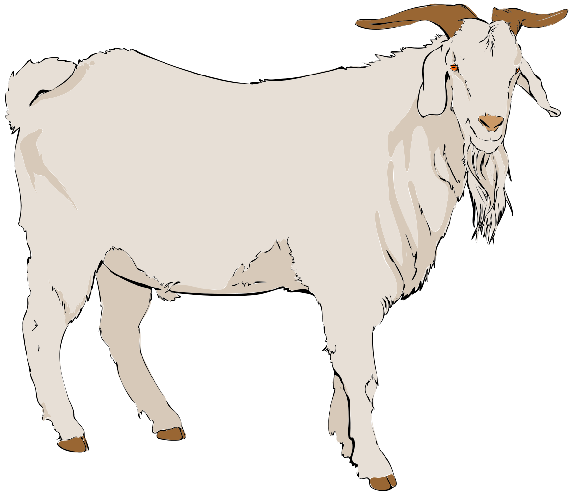 Goat clipart #12, Download drawings