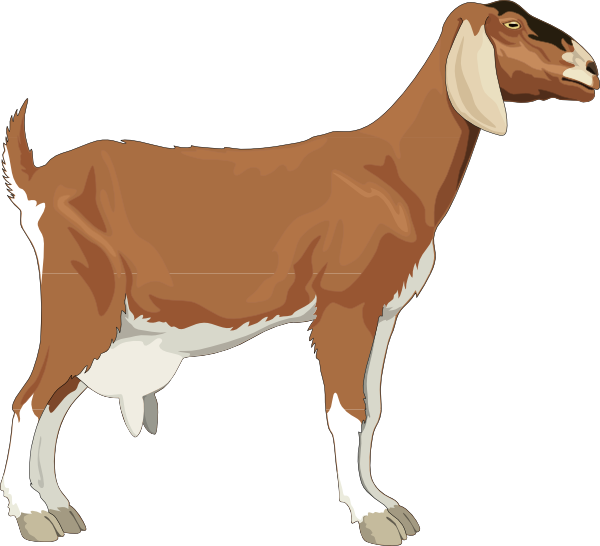 Goat clipart #4, Download drawings