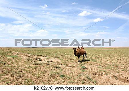 Gobi Desert clipart #11, Download drawings