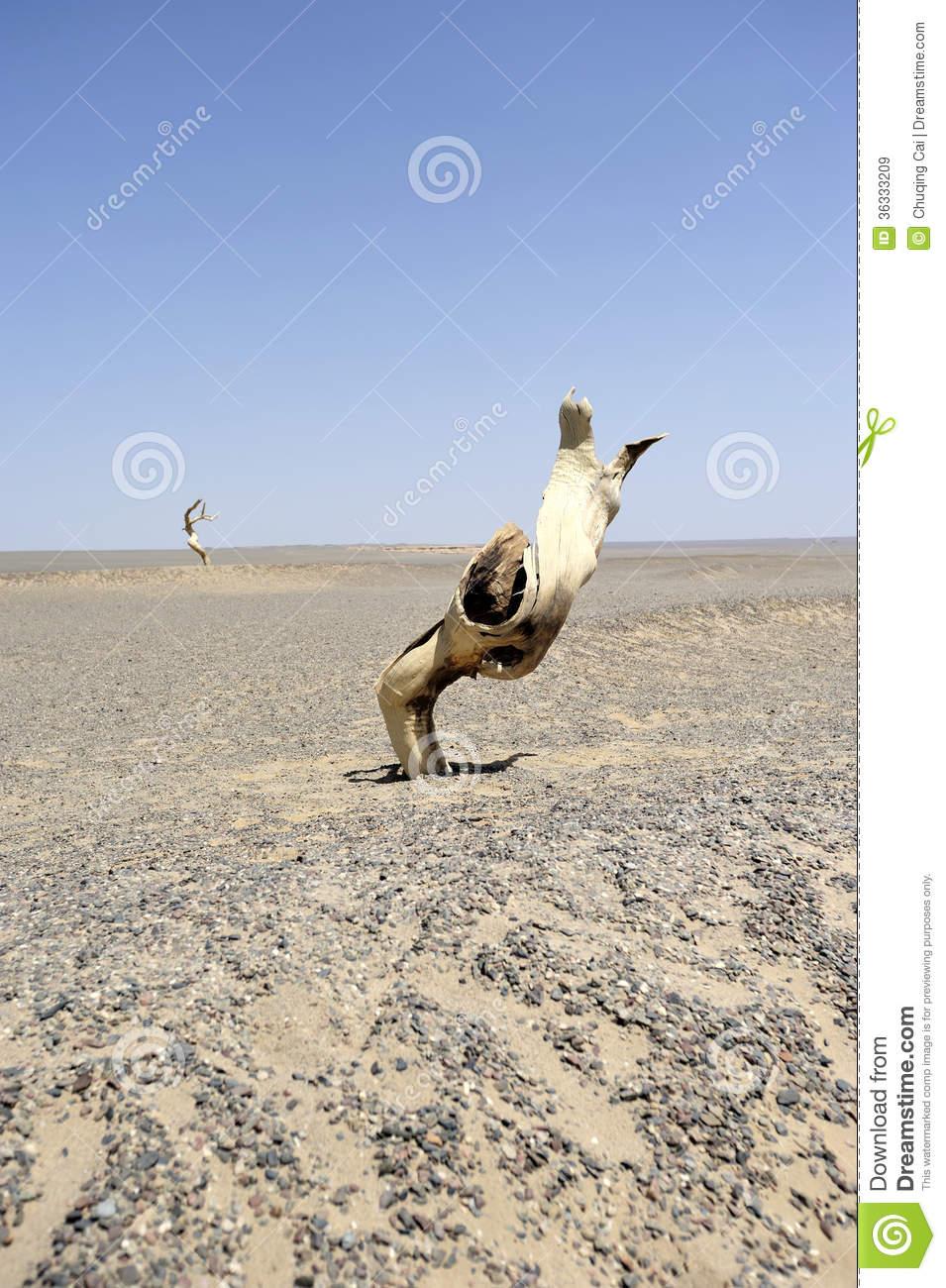 Gobi Desert clipart #17, Download drawings