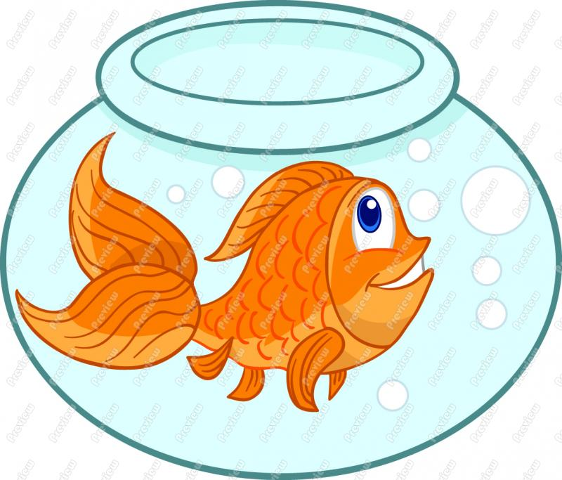 Gold Fish clipart #1, Download drawings