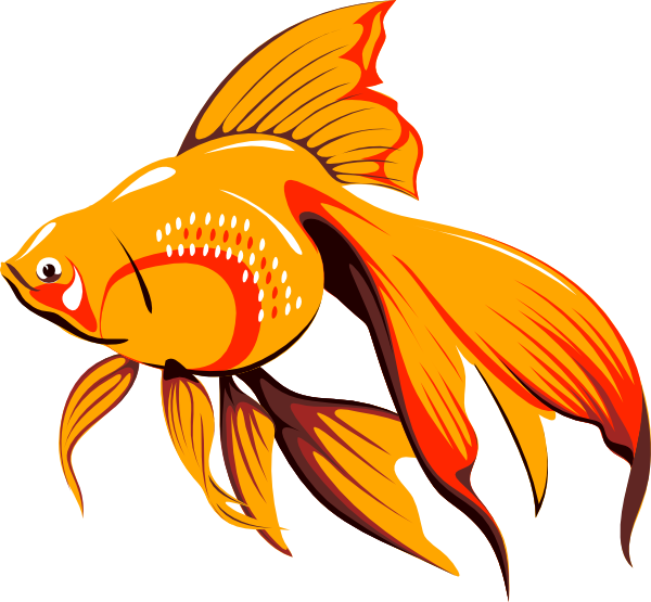 Gold Fish clipart #14, Download drawings