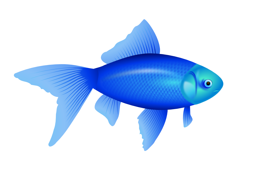 Gold Fish svg #15, Download drawings