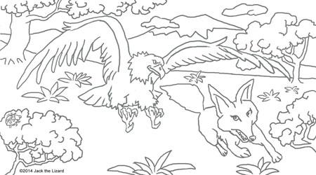 golden eagle coloring page - golden eagle coloring download golden eagle coloring