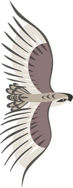Golden Eagle svg #5, Download drawings