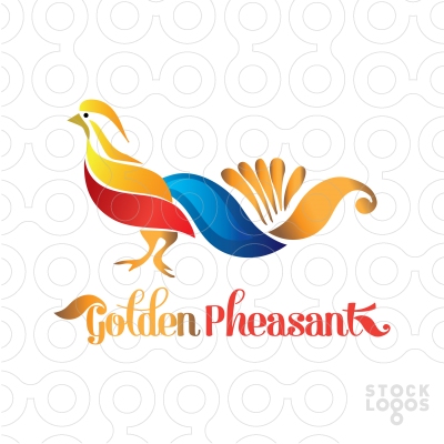 Golden Pheasant clipart #4, Download drawings