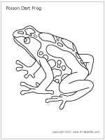 Golden Poison Frog clipart #17, Download drawings