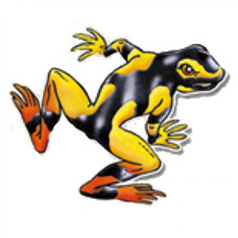 Golden Poison Frog clipart #1, Download drawings