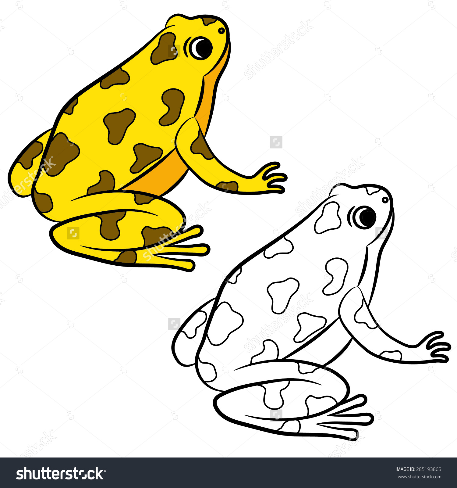Golden Poison Frog clipart #7, Download drawings