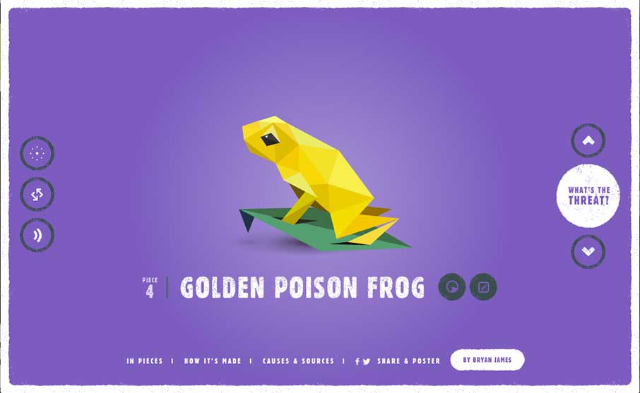 Golden Poison Frog svg #4, Download drawings