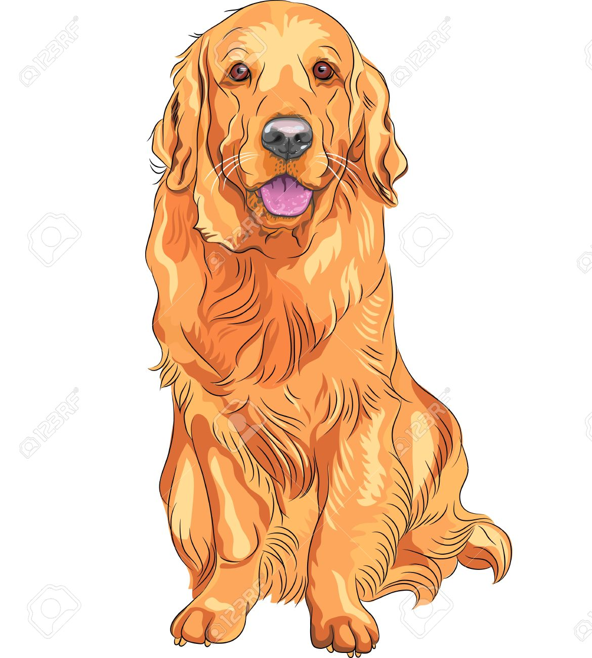 Retriever clipart #6, Download drawings