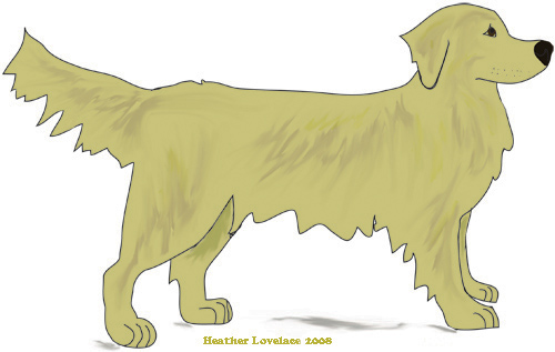 Golden Retriever clipart #12, Download drawings