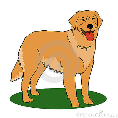 Golden Retriever clipart #13, Download drawings