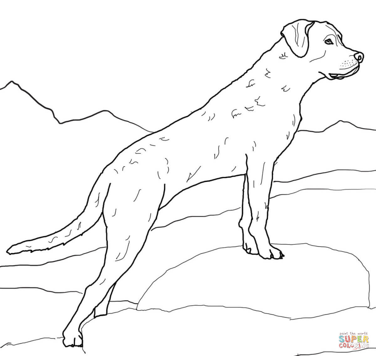 Golden Retriever coloring #4, Download drawings