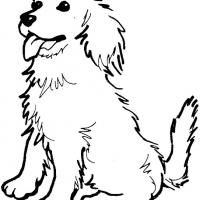 Golden Retriever coloring #12, Download drawings