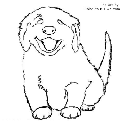 Golden Retriever coloring #6, Download drawings