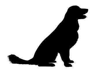 Golden Retriever svg #3, Download drawings