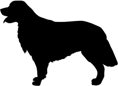 Golden Retriever svg #1, Download drawings