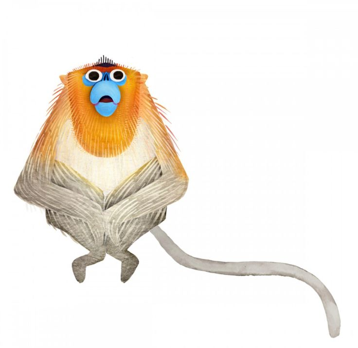 Golden Snub-nosed Monkey svg #10, Download drawings