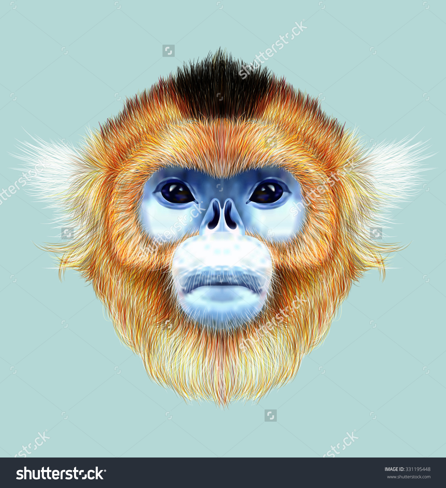 Golden Snub-nosed Monkey clipart #2, Download drawings