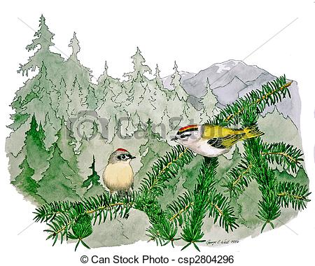 Golden-crowned Kinglet clipart #2, Download drawings