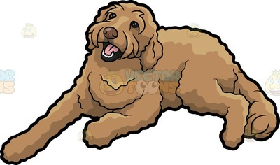 Goldendoodle clipart #17, Download drawings
