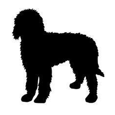 Goldendoodle clipart #8, Download drawings