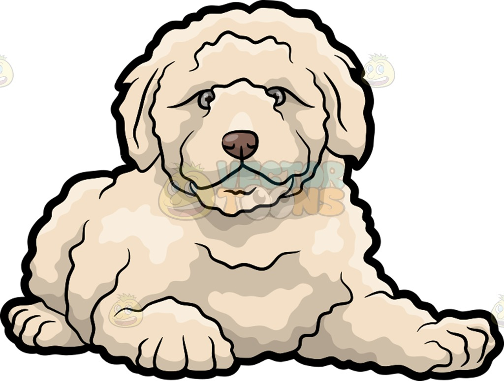 Goldendoodle clipart #4, Download drawings
