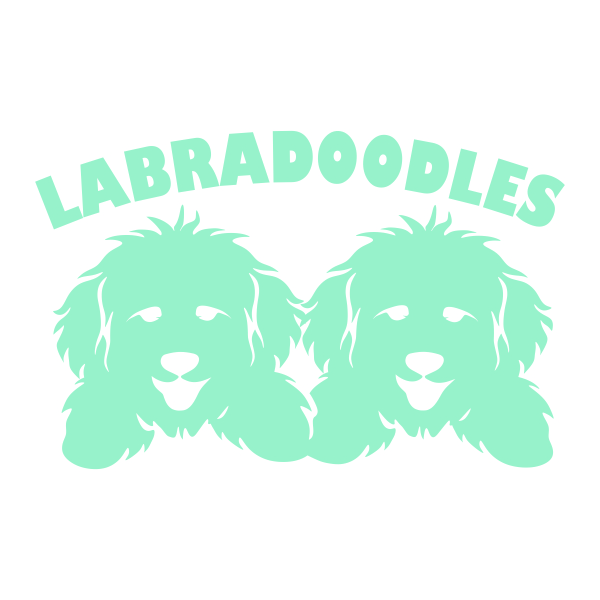 Goldendoodle svg #13, Download drawings