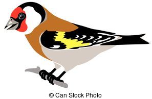Goldfinch clipart #18, Download drawings