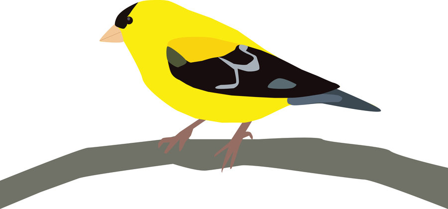 Goldfinch clipart #20, Download drawings