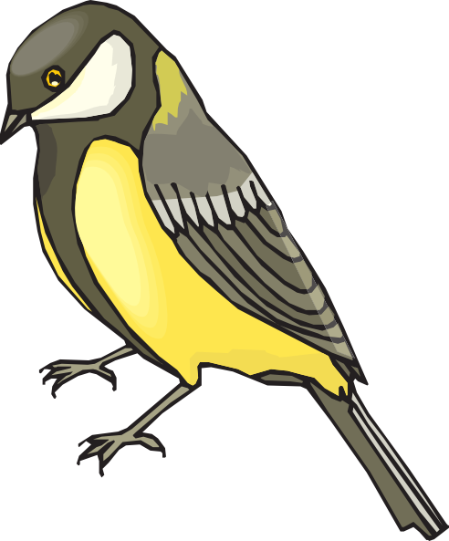 Goldfinch clipart #11, Download drawings