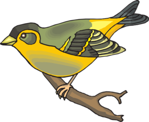 Goldfinch clipart #7, Download drawings