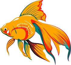 Goldfish clipart #14, Download drawings