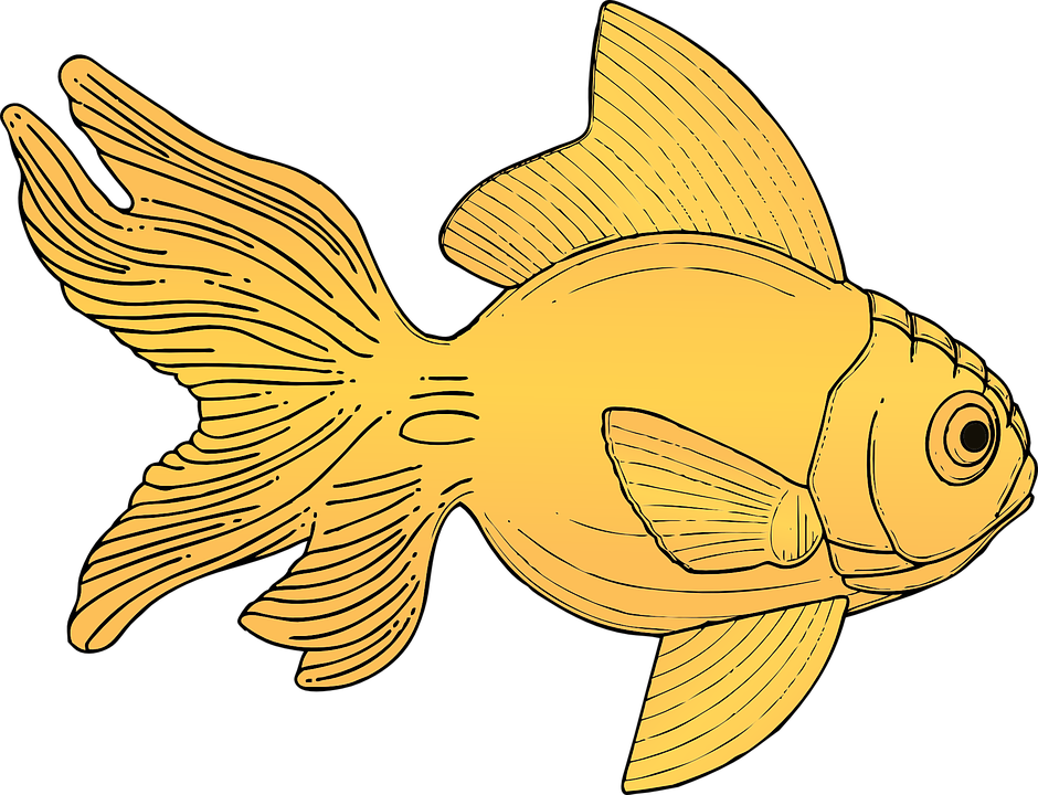Goldfish svg #1, Download drawings