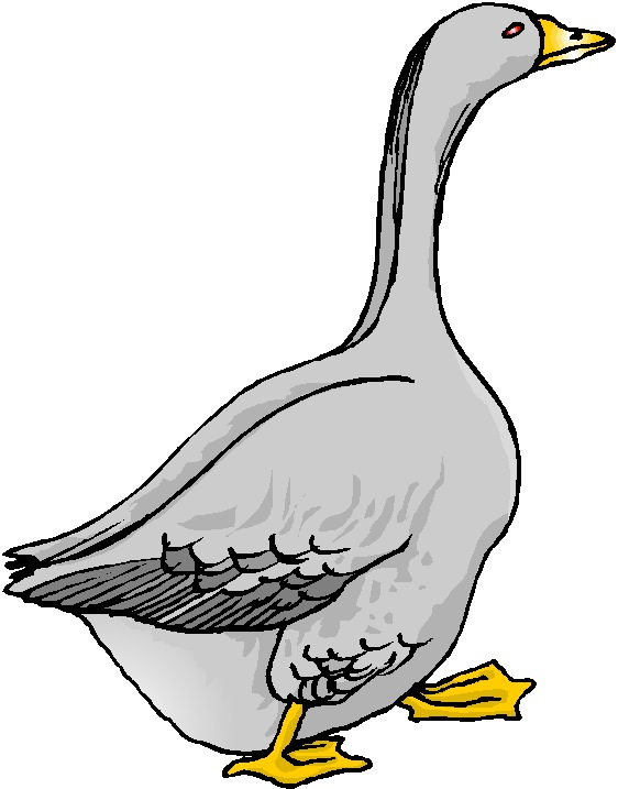 Goose clipart #15, Download drawings