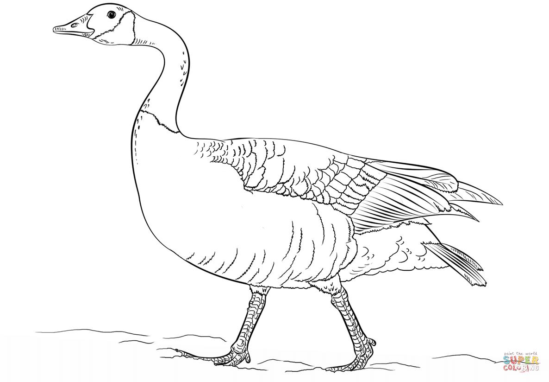 Goose coloring #7, Download drawings