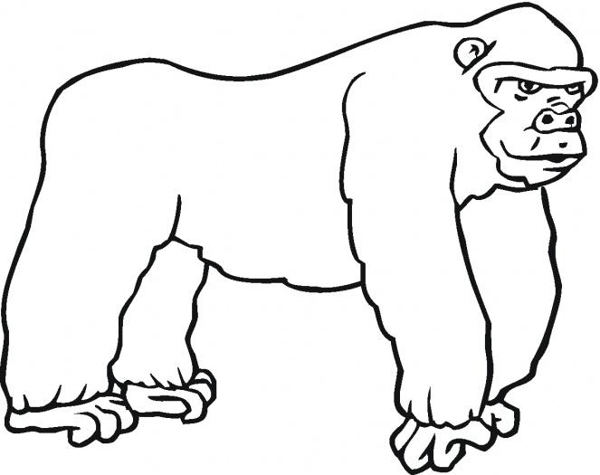 Gorilla coloring #16, Download drawings