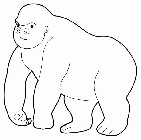 Gorilla coloring #13, Download drawings