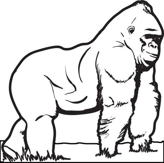 Gorilla coloring #18, Download drawings