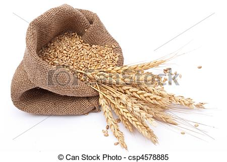 Grain clipart #13, Download drawings