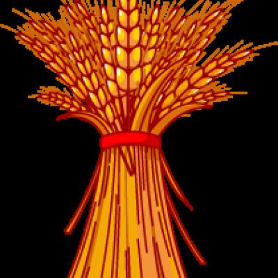 Grain clipart #12, Download drawings